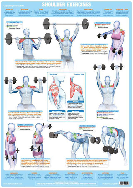 Shoulder Exercises Weight Training Fitness Instructional Wall Chart Poster - Chartex Products