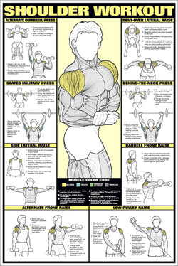 Shoulder Workout Professional Fitness Instructional Wall Chart Poster - Fitnus Corp.