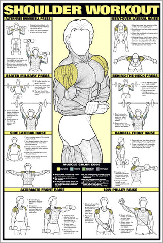 Shoulder Workout (Men's) Professional Fitness Wall Chart - Fitnus Corp.