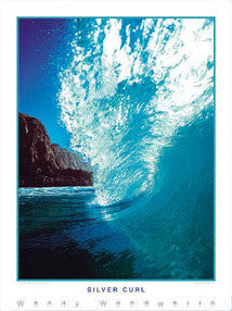 "Surfing ""Silver Curl"" (Laguna Beach, California) Poster Print - Creation Captured"