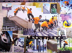 """Surviving the Urban Jungle"" - Pyramid Posters 2000"