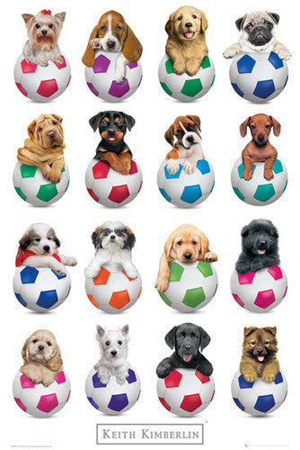 Puppies on Soccer Balls Poster by Keith Kimberlin - GB Eye (UK)