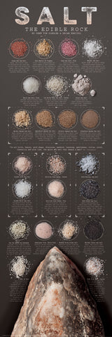 SALT, THE EDIBLE ROCK Kitchen Spices Wall Chart Poster by Tim Ziegler and Brian Keating - American Image