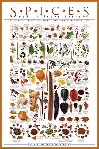 Spices and Culinary Herbs Wall Chart Poster by Tim Ziegler and Brian Keating - American Image