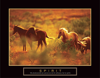 "Wild Horses ""Spirit"" Motivational Poster - Front Line"