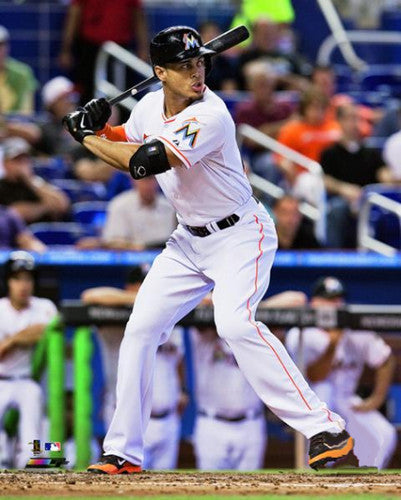 "Giancarlo Stanton ""Intensity"" Miami Marlins Baseball Premium Poster - Photofile 16x20"