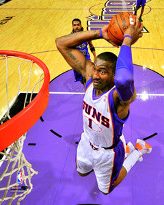 "Amare Stoudemire ""Netcam Slam"" - Photofile 16x20"