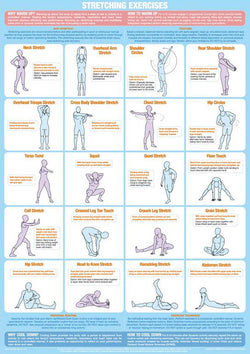 Stretching Exercises Fitness Workout Instructional Wall Chart Poster - Chartex Products