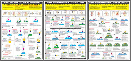 Stretching Exercises Fitness Wall Chart Set (3-Poster Combo) - Chartex Inc.