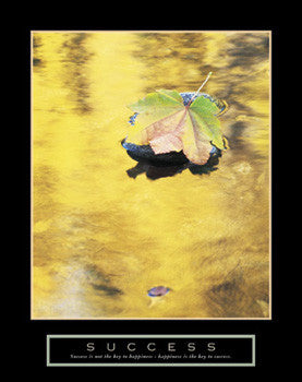 "Leaf in Pond ""Success"" (Happiness) Motivational Poster - Front Line"