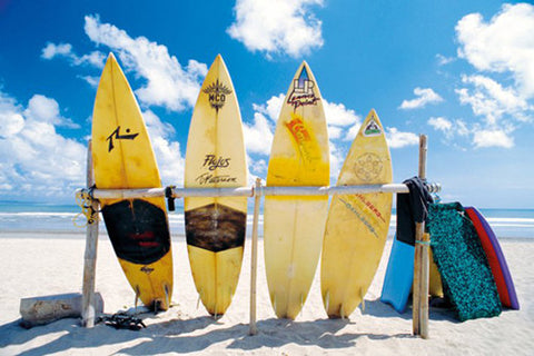Sun, Sand, and Surfboards Beach Life Surfing Poster - Pyramid International