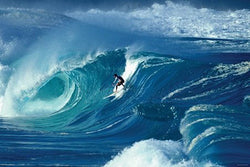"Surfing ""Waimea Shorebreak"" Poster (Surfer: Marco Polo) - Import Images NY"