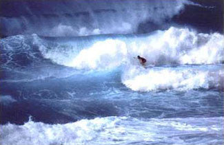 """Surf Hawaii"" - Nuova 2001"
