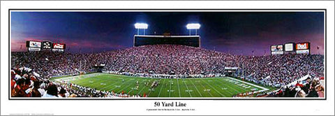 "Tampa Bay Bucs ""50 Yard Line"" (Tampa Stadium 1992) Panoramic Poster - Everlasting Images"