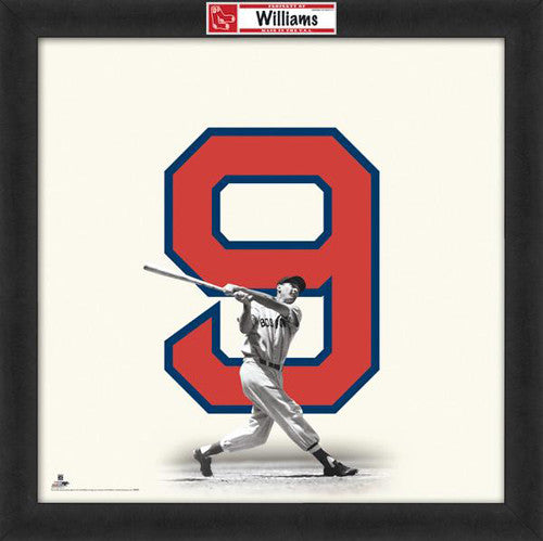 "Ted Williams ""Number 9"" Boston Red Sox MLB FRAMED 20x20 UNIFRAME PRINT - Photofile"