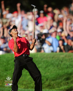 "Tiger Woods ""Torrey Pines Clutch"" (2008) PGA Golf Premium 20x24 Poster Print - Photofile Inc."