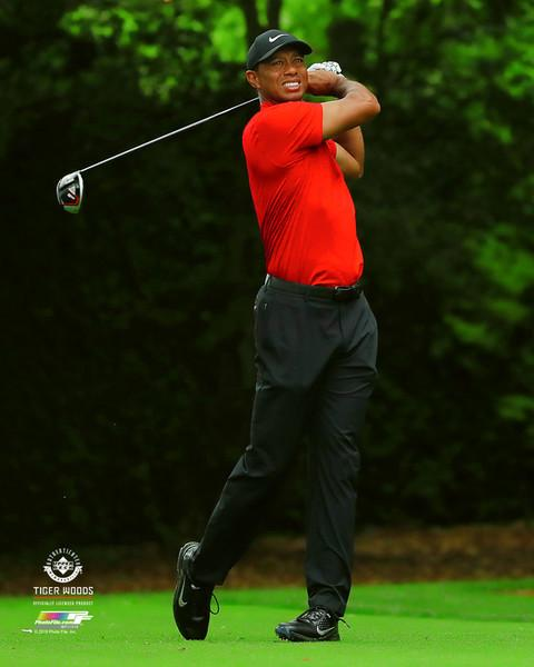 "Tiger Woods ""Masterful"" (2019 Masters) PGA Golf Premium 20x24 Poster Print - Photofile Inc."