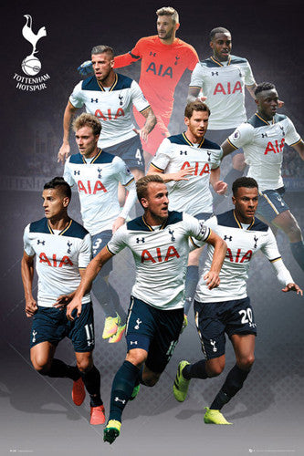 Tottenham Hotspur 9-Players In Action Official EPL Soccer Football Poster - GB Eye 2016/17