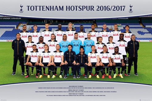 Tottenham Hotspur FC Official Team Portait 2016/17 EPL Poster - GB Eye (UK)