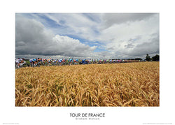 "Tour de France ""Wheat Fields"" (2008) Premium Poster Print - Graham Watson"