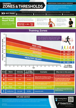 Training Zones and Cardio Thresholds Fitness Training Wall Chart Poster (w/QR Code)