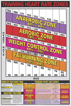 Training Heart Rate Zones Cardio Workout Professional Fitness Wall Chart Poster - Fitnus Corp.