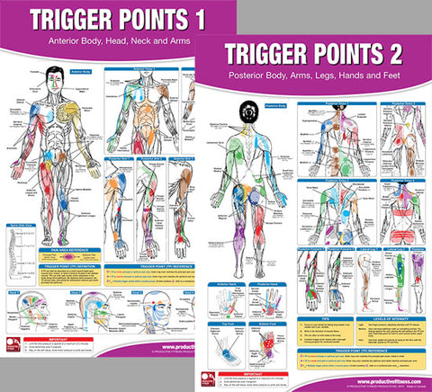 Trigger Points Massage Therapy Fitness Anatomy 2-Poster Wall Chart ...