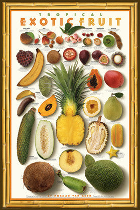 Tropical Exotic Fruits Wall Chart Poster by Norman Van Aken - American Image