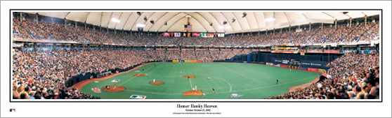 "Minnesota Twins ""Homer Hanky Heaven"" Metrodome Panoramic Poster Print - Everlasting"