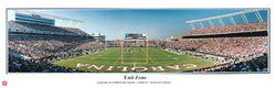 "South Carolina Gamecocks Football ""End Zone"" Panoramic Poster Print - Everlasting Images"