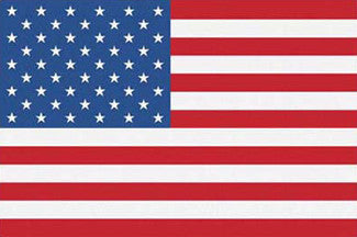 US Flag Poster - Trends International