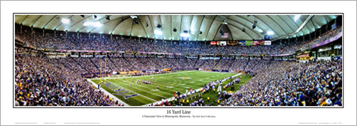 "Minnesota Vikings ""16 Yard Line"" Panoramic Poster Print - Everlasting Images"