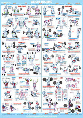 Weight Training Fitness Complete Body Instructional Wall Chart Poster - Chartex Products