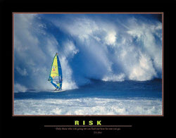 "Windsurfing ""Risk"" Motivational Poster Print - Eurographics"