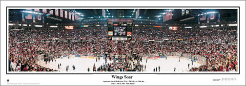 "Detroit Red Wings ""Wings Soar"" 2002 Stanley Cup Champs Panoramic Poster - Everlasting"