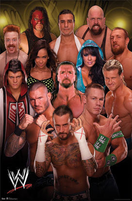 WWE Wrestling Superstars 2012 Fan Poster - Costacos Sports