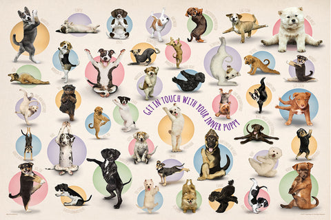 "Yoga Dogs ""Get In Touch With Your Inner Puppy"" Poster - Eurographics Inc."