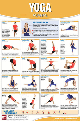 Yoga Fitness Asanas Wall Chart Professional Gym Poster - Productive Fitness