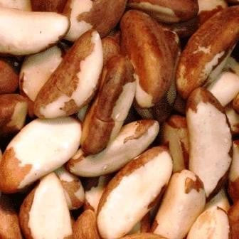 Brazil Nuts - Raw, Unsalted - Half Nuts