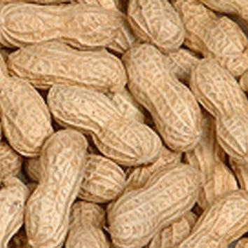 Peanuts in the Shell - Roasted, Salted-Manufacturer-Half Nuts