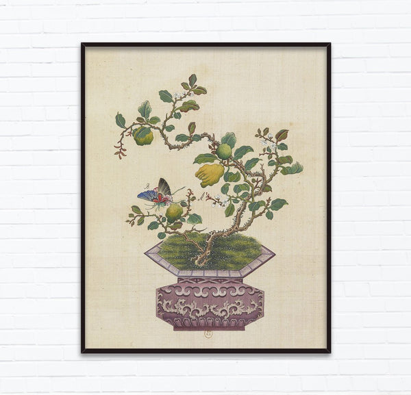 18th Century Chinese Bonsai Botanical Ink and Brush Painting, Flowers and Birds, design inspiration, Wall Art, Posters, INSTANT Download at Lifeix Design