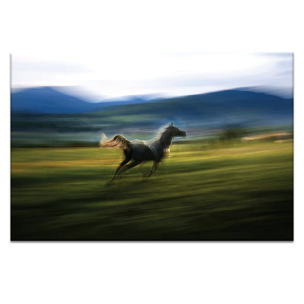 Alone Photograph Artwork Home Decor Wall Art at Lifeix Design