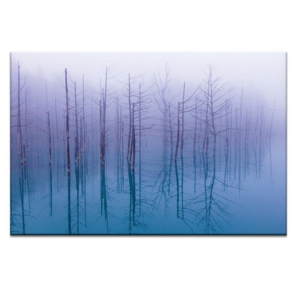 Blue Pond Photograph Artwork Home Decor Wall Art at Lifeix Design