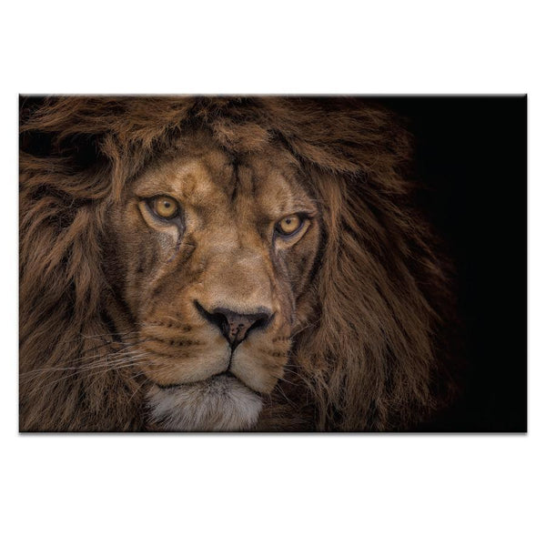 Brink of Extinction Photograph Artwork Home Decor Wall Art at Lifeix Design