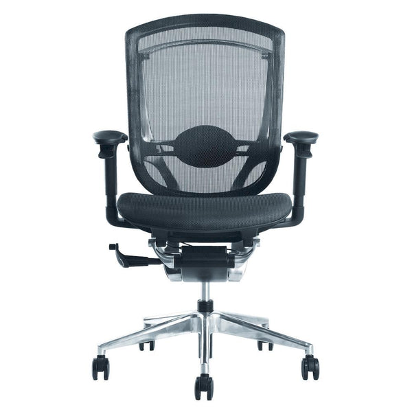 Black Ergo Fit Highly Adjustable Mesh Office Chair