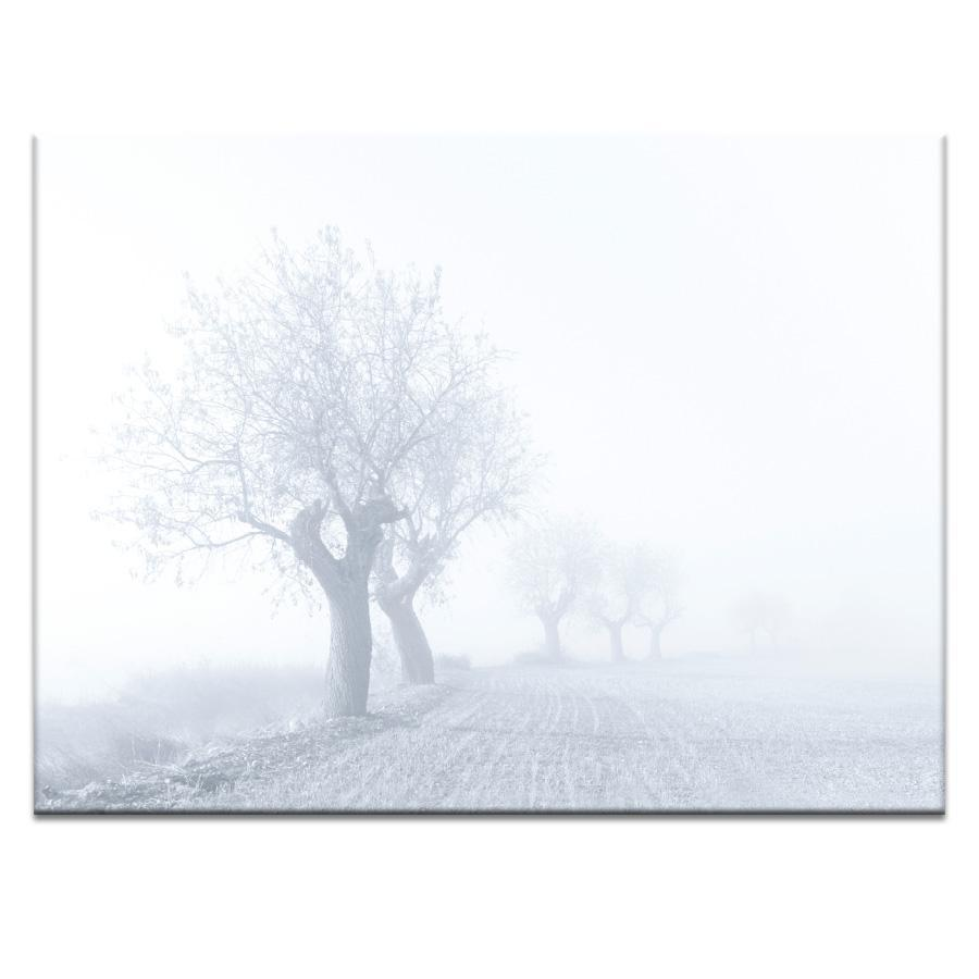 Foggy Sunday Photograph Artwork Home Decor Wall Art at Lifeix Design