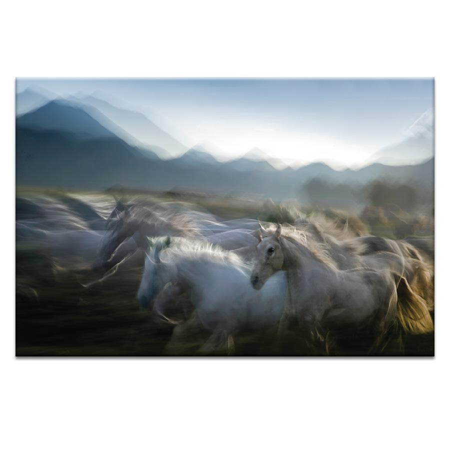In Akcion Photograph Artwork Home Decor Wall Art at Lifeix Design