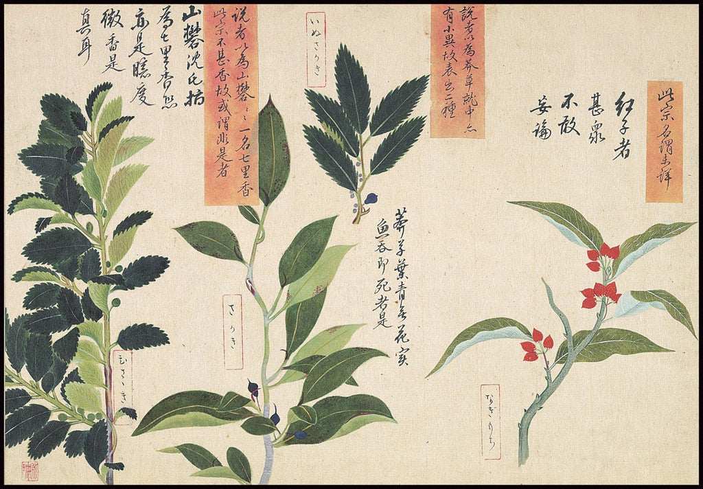 Japanese Botanical Ink and Brush Painting, Hand Drawing Flowers and Calligraphy, Wall Art INSTANT Download at Lifeix Design