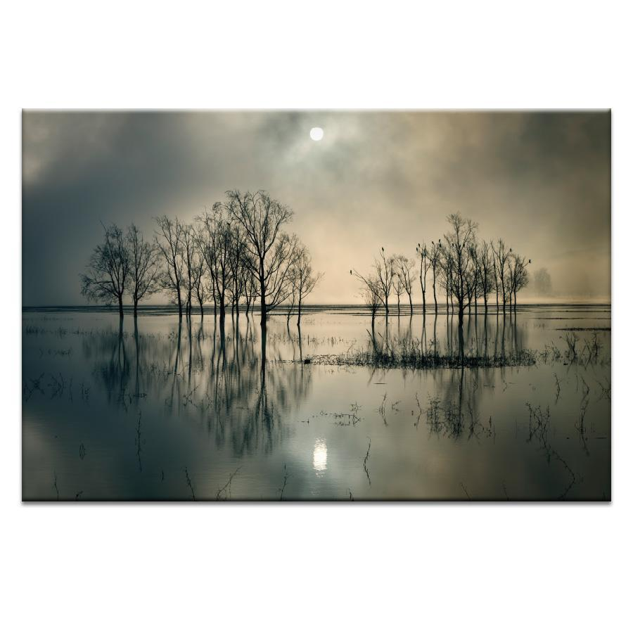 Lake's Secret Photograph Artwork Home Decor Wall Art at Lifeix Design