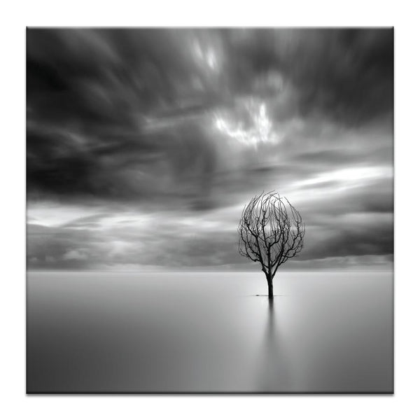 Lonley Tree Photograph Artwork Home Decor Wall Art at Lifeix Design